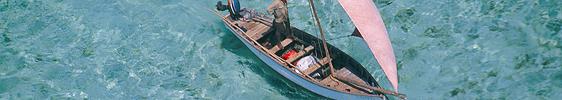 Der Fisch und Mauritius