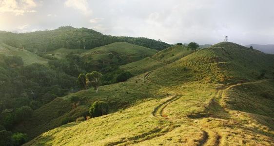 Dodo Trail Mauritius