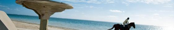 Mauritisch Reiten – eine Urlaubsdisziplin
