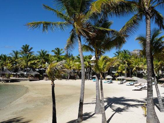 GT Paradise Cove